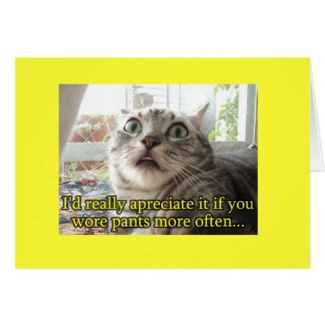 cards cat cat greeting card zazzle