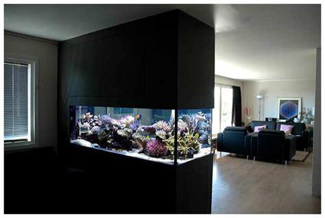 wall aquarium how to make wall aquarium and wall fish tank diy
