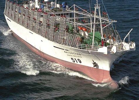 insurance on fishing boat fishing boat trawler marine insurance