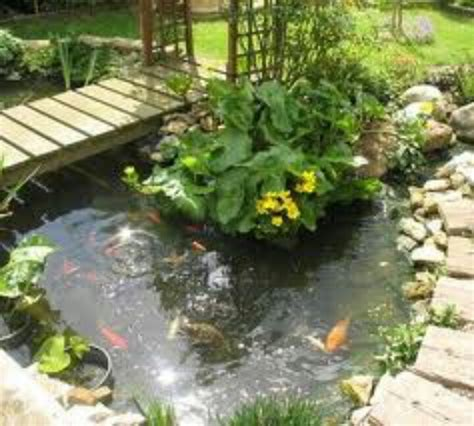koi pond bridge koi pond with bridge gardens pinterest