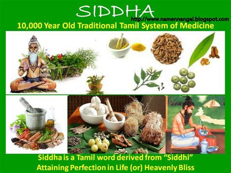 importance of in new year importance of tamil new year 28 images sinhala and