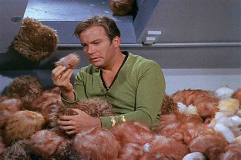 trek tribbles classic and tv caf 233 the 5 best episodes of the