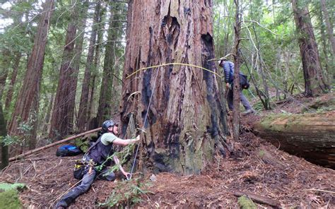 The Weekend Link by The Weekend Link List Sept 29 Land Trust Of Napa County