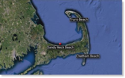 chatham cape cod sharks great white shark videoed by fisherman cape cod weeks