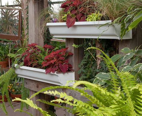 Gutters As Planters by Use Gutter Sections As Planter Boxes Show House