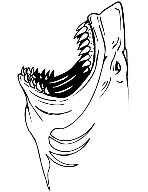 jaws shark coloring page h m coloring pages