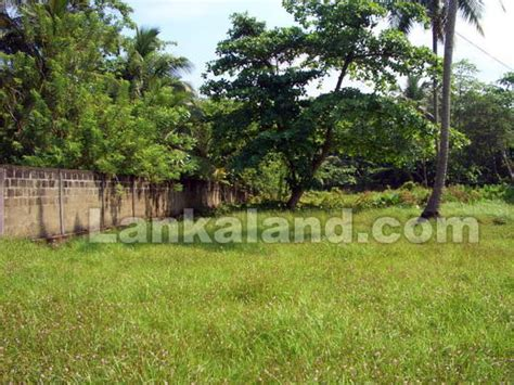 sri lanka immobilien property in sri lanka