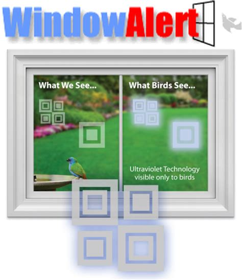 window alert bird collision decals modern square 8 pack