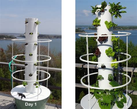 Aeroponic Tower Garden by 1000 Images About New Aeroponic Tower Gardens On Gardens A Month And Juice