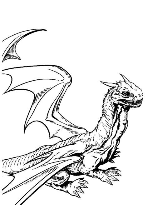 Coloriage Dragon Harry Potter Et La Coupe De Feu 1 Sur Coloriage Astrid Et Les Dragons L