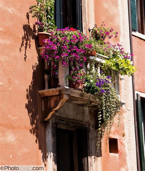 balcony window boxes mexican balcony flowers flower boxes bask in sun on a