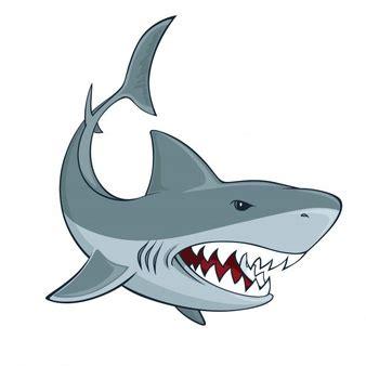 baby shark vector shark vectors photos and psd files free download