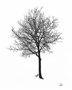 bare winter tree photograph by michael flood