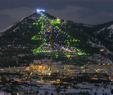 the biggest christmas tree in the world a luxury travel