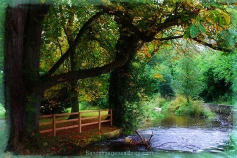 imagenes paisajes naturales gratis paisajes gratis great shipwreck x paisajes fondos de