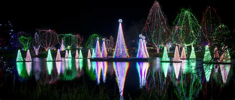 lights at columbus zoo collection columbus zoo lights pictures
