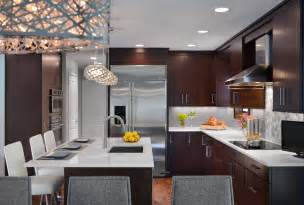 Designing A Kitchen Transitional Kitchen Designs Kitchen Designs By Ken