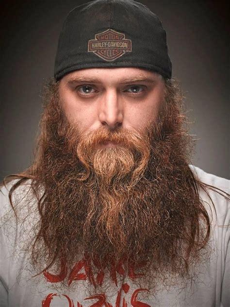 viking braided sideburns image gallery long viking beards
