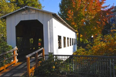 Cottage Grove Covered Bridge Tour Route by Mid Summer At Dorena Lake Picture Of Cottage Grove