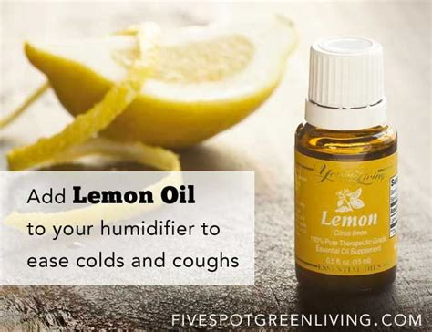 Essential Detox Humidifier by Did You Lemon Can Help With Colds And Coughing