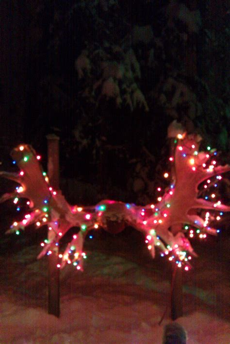 Fun Friday In Alaska No Black Required Ak On The Go Anchorage Zoo Lights