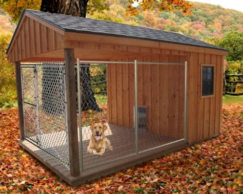 Homeward Bound The Best Dog House For Your Hound