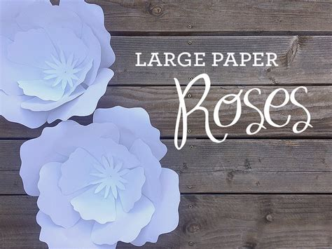 How To Make A Big Paper - how to make paper roses plus a free petal template