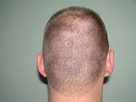 square back haircut rounded neckline bradaptation com