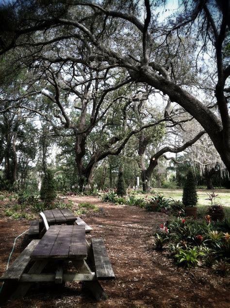 79 Best Orlando Images On Pinterest Orlando Orlando Winter Park Botanical Gardens