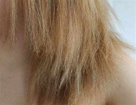 bleaching after color what you should before attempting hair bleaching