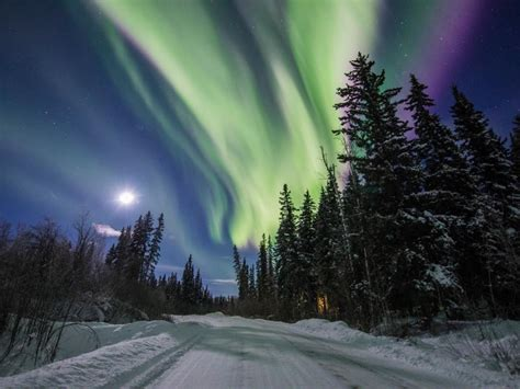 can you see the northern lights in fairbanks alaska how to see the northern lights in fairbanks alaska