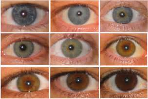 what is the least common eye color eye color