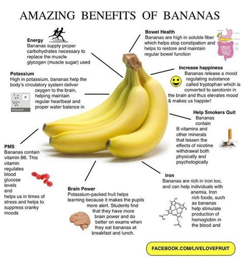 Banana Medicinal And Cosmetic Value by Banana Nutrition Facts The Amazing Health Benefits Of