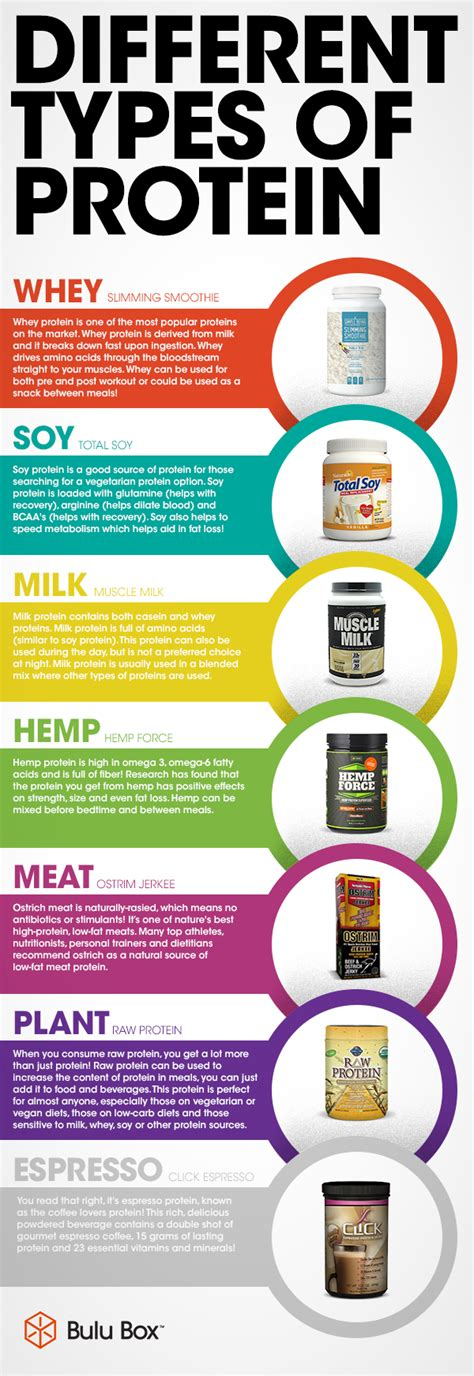 protein nutrients proteins different types of protein http www