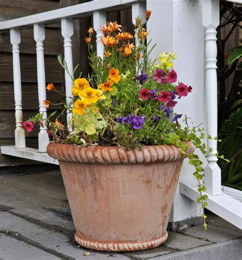 Flower Planters by Containers Southern Lawn