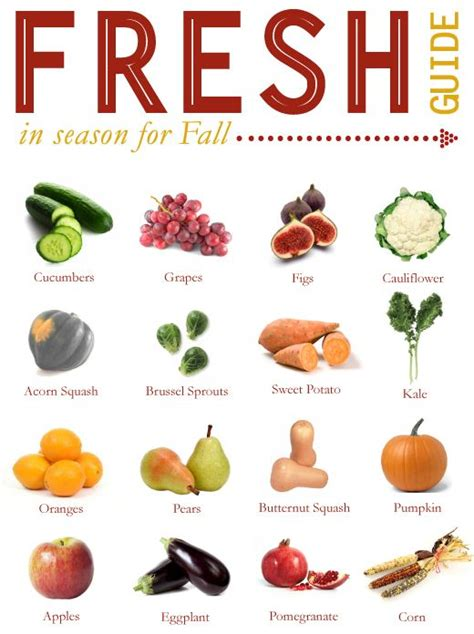 fall vegetables 16 tasty fall fruits and vegetables fruits and