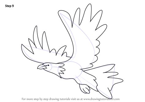 drawing images for kids learn how to draw an eagle for kids birds step by step