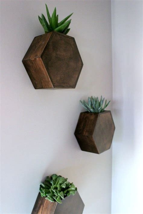 wall planter indoor 17 best ideas about indoor wall planters on pinterest
