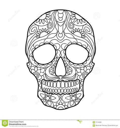 skull coloring book skull coloring book for adults vector vector