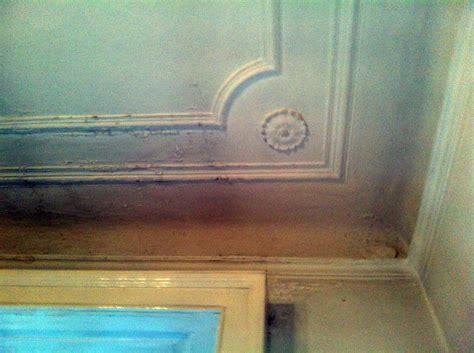 infiltrazioni soffitto foto soffitto con infiltrazioni d acqua foto 1 di ciello