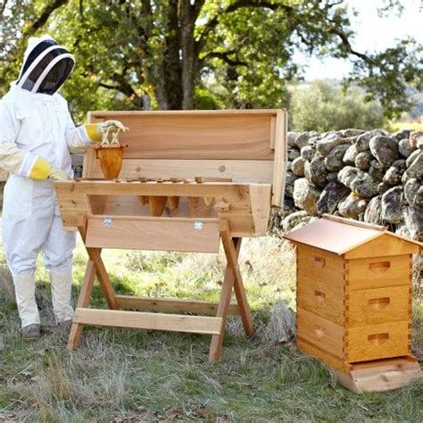 beekeeping top bar top bar beehive williams sonoma home and garden pinterest beautiful top bar hive and bees