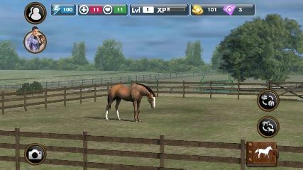 download image chincoteague pony and foal pc android iphone and ipad the best free games for android