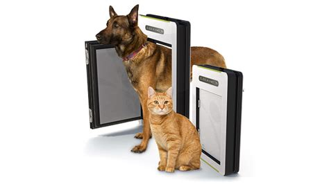 Automatic Pet Doors by Detecting Automatic Pet Door Keeps Your Or Cat