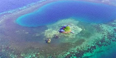 belize private island rental bird island rental on airbnb rent a private island in belize