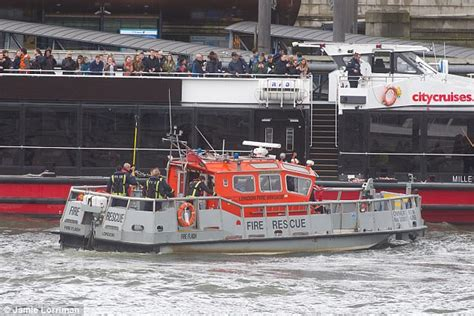thames river rescue london attack cruise ship rescues woman from thames