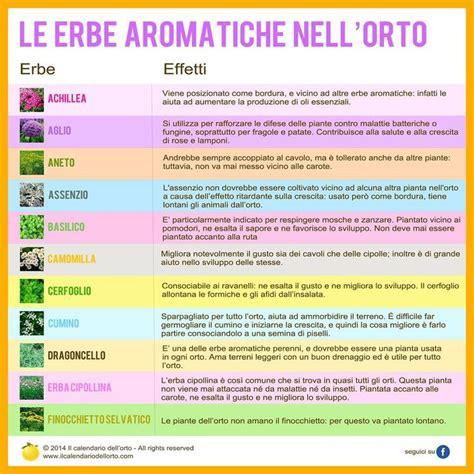 calendario semina fiori il calendario dell orto gli ortaggi in piante