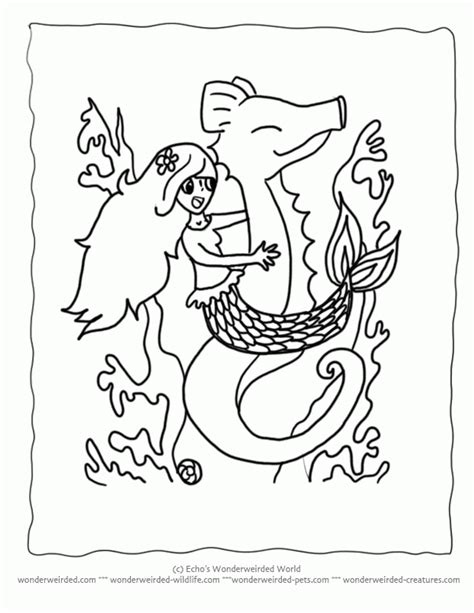 coloring pages colouring pages mermaid coloring pages in mermaid on seahorse coloring pages cartoon seahorse