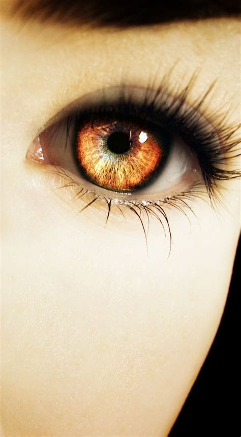 what does my eye color say about me 25 best eye color ideas on pretty