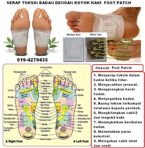 Harga Detox Foot Patch by Detox Foot Patch Termurah Pelekat Kaki Serap Toksin