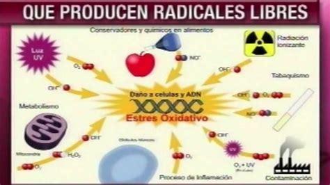 Imagenes De Radicales Libres Y Antioxidantes | dr cormillot antioxidantes vs radicales libres youtube